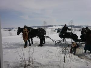 Sleighride in Ohio's Amish Country